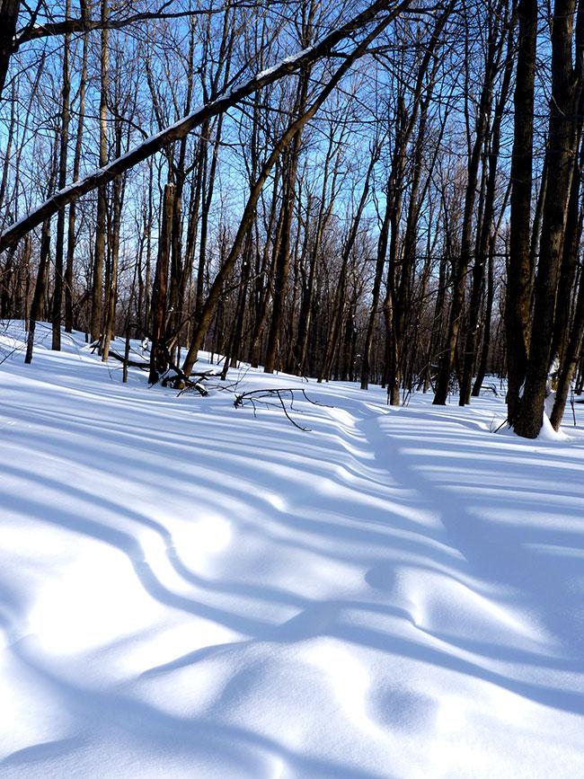 randonnee raquette neige montagne